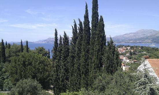 Villa Radovic: view