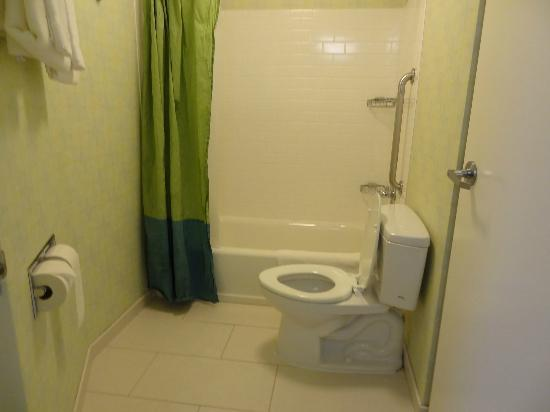 SpringHill Suites Chicago Downtown/River North: Bathroom (the basin is separated)