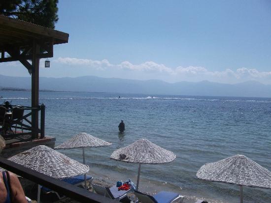 Omer Holiday Resort: LA PLAGE