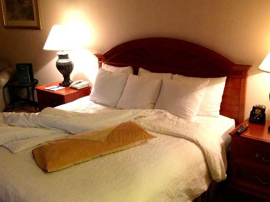 Hilton Garden Inn Palm Springs/Rancho Mirage: Very Comfortable bed