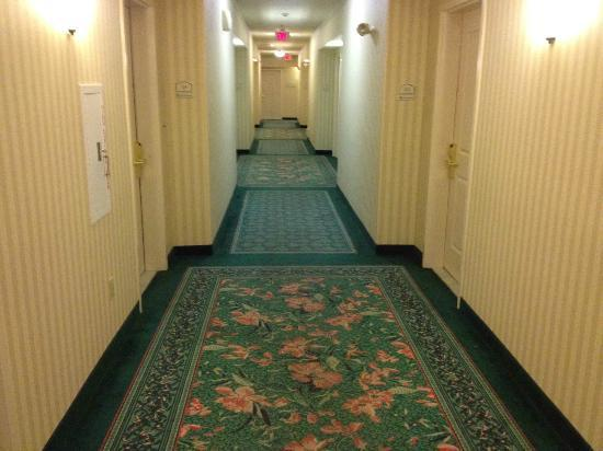 Hilton Garden Inn Palm Springs/Rancho Mirage: Clean hallways