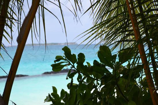 Kuramathi Island Resort: vista