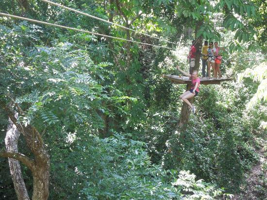 Jungle Top Zipline Adventure: Weeee....