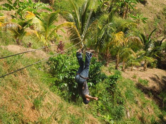 Jungle Top Zipline Adventure: Hangin' like a monkey