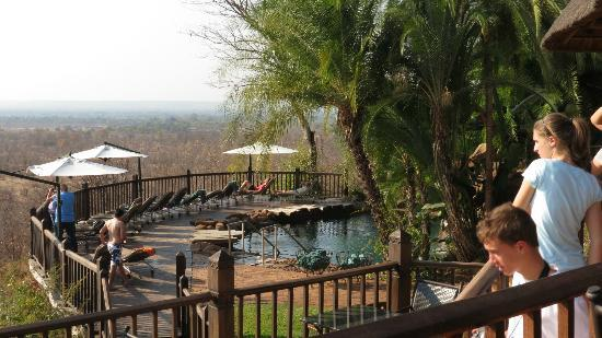 Victoria Falls Safari Lodge: The pool