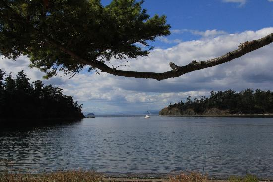 Sucia Island State Park: Fossil Bay, Sucia