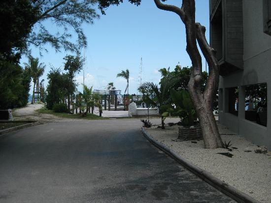Marathon Key Beach Club: View from left side of Building A