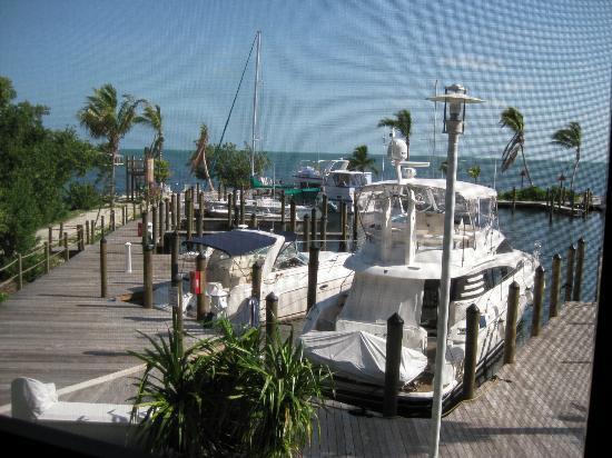 Marathon Key Beach Club: View of marina from living room