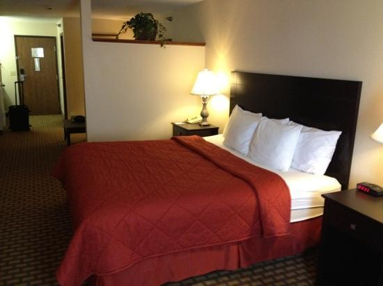 Comfort Inn & Suites Downtown: suite