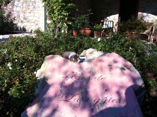 Romeo, il Casale al Lavaggio