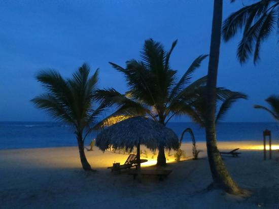 Zoetry Agua Punta Cana: Dinner on the beach