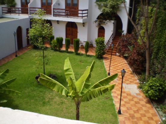Bonito patio pero sin mantenimiento picture of for Modelos de jardines interiores