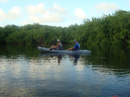Outdoor Bonaire: Kayak tour mangroves