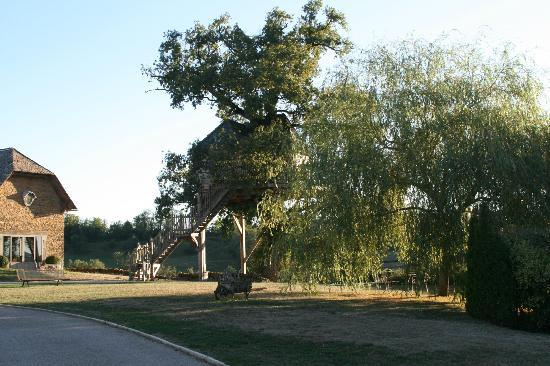 Chateau de Labro: la cabane dans le chêne