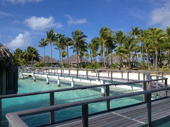 The St. Regis Bora Bora Resort: Walkway to our OWB