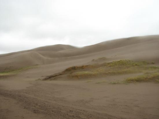 Zapata Ranch - A Nature Conservancy Preserve: riding along sand dunes