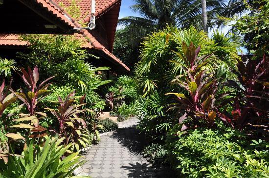Smile House Resort: Lush garden 
