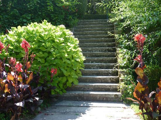 Hotel Sintra Jardim: Jardin