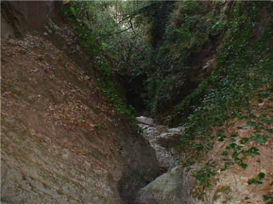 Kastora Canyon: Φαράγγι Κάστορα