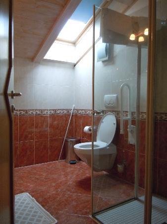 Residence-Pension Gasser : Il bagno del nostro appartamento