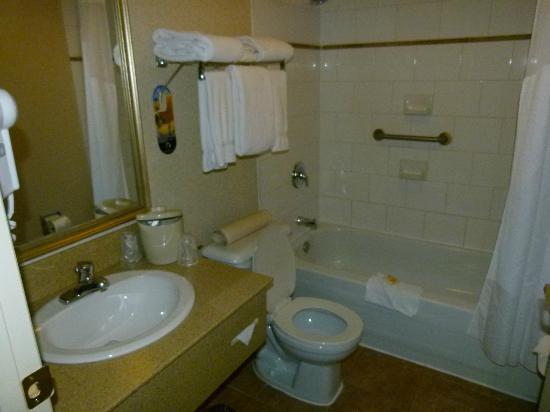 Holiday Inn Hinton : bathroom