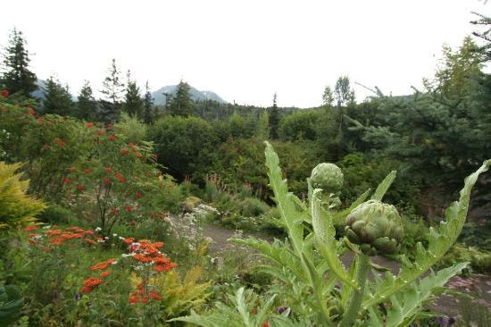 Stillpoint Lodge: Vegetable Garden