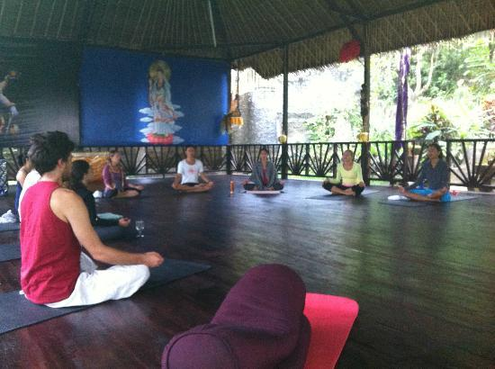 Shankari's Bali Retreat : yoga hall
