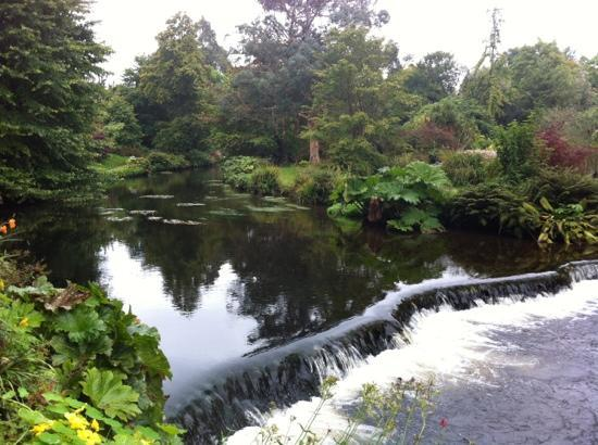 Mount Usher Gardens: A river runs through it!