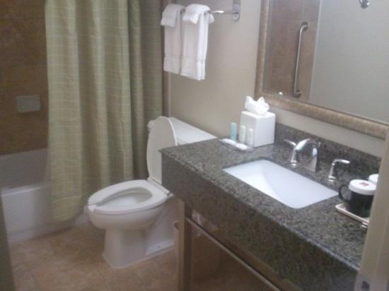 Clarion Inn & Suites Conference Center: bathroom