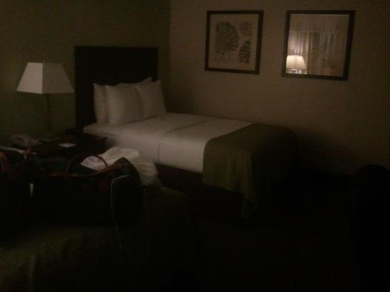 Clarion Inn & Suites Conference Center: guestroom