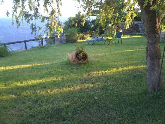 Elgini Studios Apartments: The garden