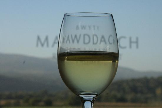 Bwyty Mawddach Restaurant: Heaven in a glass!