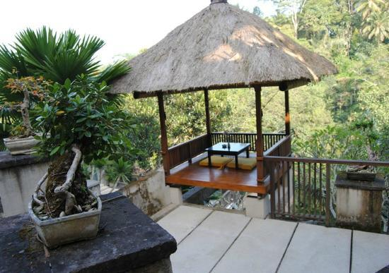 Alam Ubud Culture Villas & Residences: hotel grounds