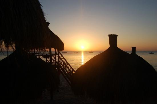 Occidental Grand Cozumel: Picture Perfect Every Night