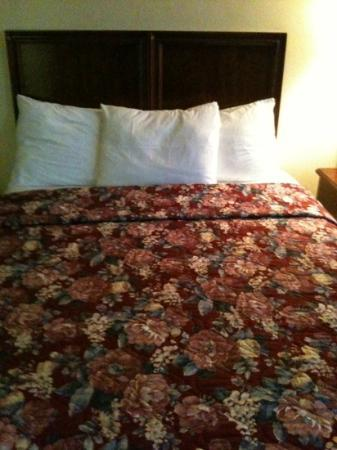 Travelers Inn: letto comodo