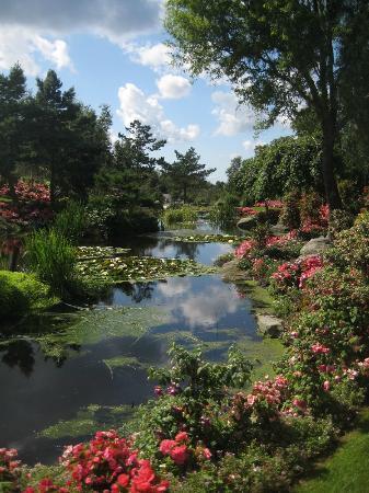 Flor og Fjære: Flor og Fjaere