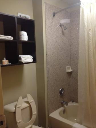 Inn at Mulberry Grove: bathroom seemed to have been remodeled recently.