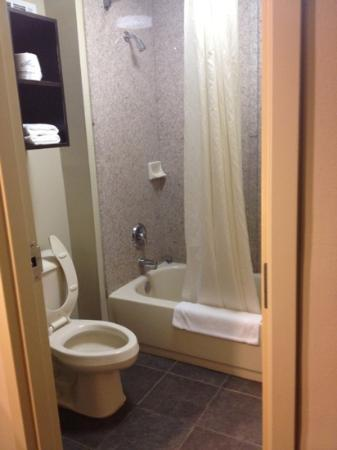 Inn at Mulberry Grove: another view of the bathroom