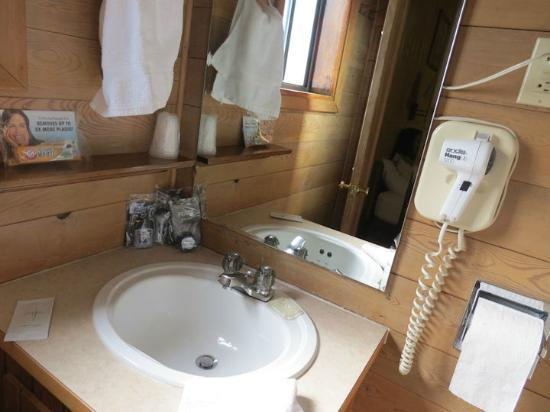 Alpine Motel: Sink area; roomy and clean