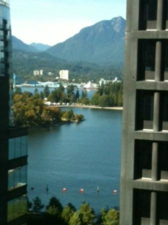 Coast Coal Harbour Hotel: Views are Incredible!