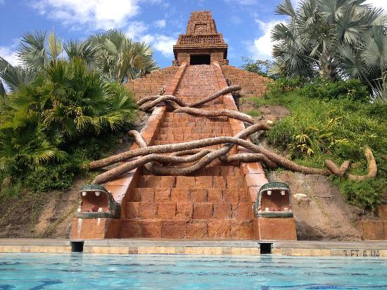 Pool at dig site picture of disney s coronado springs resort orlando