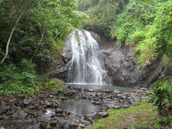 Koro Sun Resort and Rainforest Spa : waterfall trip!