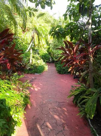 Whispers Resort at Treasure Island: Beautiful garden (walk way from room to the pool and dock)