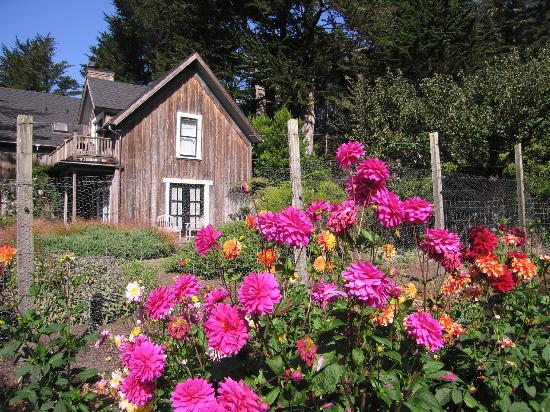 Glendeven Inn Mendocino: Garden with Stevenscroft Bldg. in Background