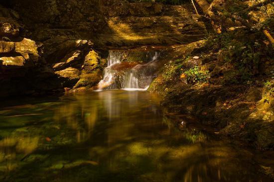 Delaware Water Gap National Recreation Area: Stream along blue trial in Mt. Tammany hike