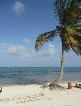 Grand Caribe Belize Resort and Condominiums: writting in the sand - a vacation must
