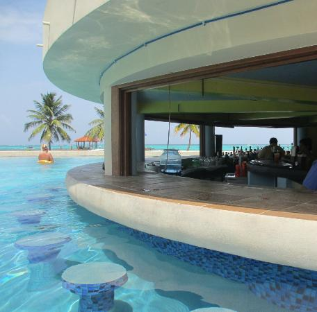 Grand Caribe Belize Resort and Condominiums: pool bar
