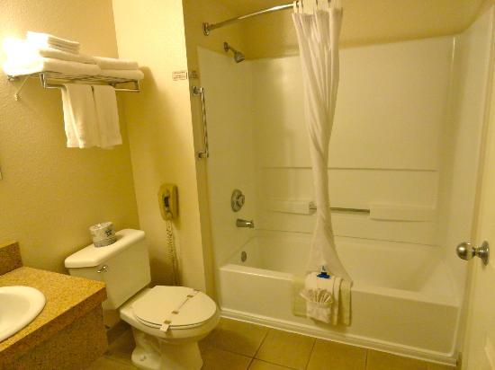 Homewood Suites by Hilton Tucson/St. Philip's Plaza University : Shower/Tub mold-free