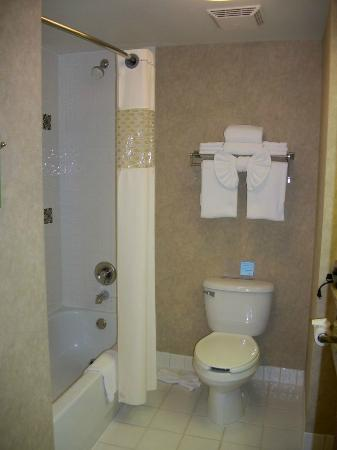 Hampton Inn San Diego/Del Mar: Bathroom