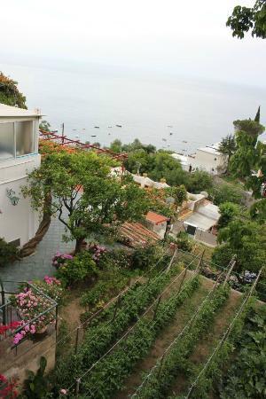 Casa Maresca: Views